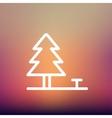 Pine tree thin line icon vector image vector image