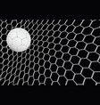 realistic soccer ball or football ball in vector image vector image