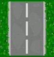 seamless pattern asphalt road with grass vector image