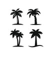 tree palms set vector image vector image