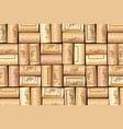 wine bottle cork pattern vector image vector image