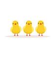 three cute chickens vector image