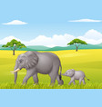 cartoon funny elephant in the wild vector image vector image
