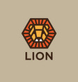 logo lion golden head with rays like sun vector image