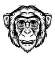 monkey for tattoo animal ideas vector image