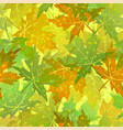 seamless pattern maple leaves vector image vector image