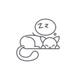 sleeping cat line icon concept sleeping cat vector image