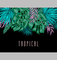 tropical background with exotic palm leaves and vector image vector image