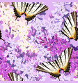 varicolored butterflies seamless vector image
