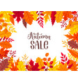 autumn leaves composition vector image vector image