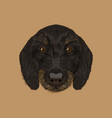 cute black curly face of domestic puppy on yellow vector image vector image
