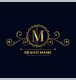 letter m luxury logo concept design vector image vector image
