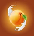 ripe apricot in realisitc milky splash vector image vector image