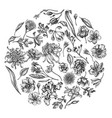 round floral design with black and white japanese vector image vector image