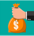 cloth bag with money in hand vector image