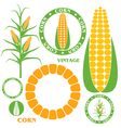 Corn Set vector image vector image