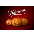 Halloween Pumpkin Jack Lanterns vector image