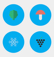 set of simple garden icons elements flake of snow vector image vector image
