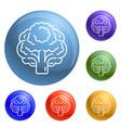 vegan broccoli icons set vector image vector image