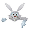 white easter bunny pointing down vector image vector image