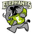 elephant school mascot vector image