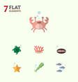 flat icon marine set of algae scallop cancer and vector image