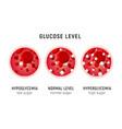 glucose blood level sugar test diabetes insulin vector image