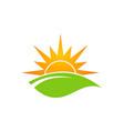 green leaf sun shine organic logo vector image vector image