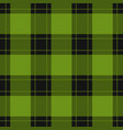 seamless black red tartan with green stripes vector image vector image