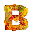 autumn stylized alphabet with foliage letter b vector image vector image
