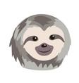 cute sloth cartoon vector image