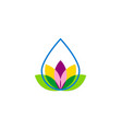 droplet flower beauty logo vector image vector image