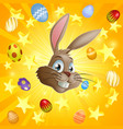 easter rabbit and chocolate eggs vector image vector image