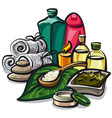 natural spa products vector image