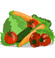 image vegetables still life cucumber tomato vector image