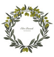 olive branch wreath isolated vector image vector image