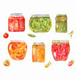 set of canned tomatos cucumbers berries vector image vector image
