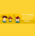 wild mushrooms banner horizontal concept vector image