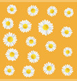 summer meadow flowers with chamomile vector image
