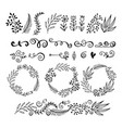 collection floral graphic design elements vector image