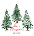 beautiful christmas tree card hand drawn vector image vector image