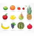 fruit low-poly style vector image