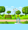 green city park with bench and fountain vector image