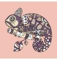 Hand drawn chameleon vector image vector image