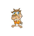 owl mascot character design vector image vector image