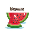 watermelon fruit fresh icon vector image