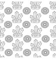 crystals and jewels with flora colorless seamless vector image