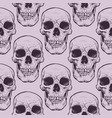 decorative human skulls seamless pattern vector image vector image