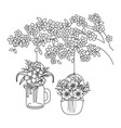 floral nature flowers cartoon vector image