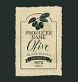 label for black olives with an olive sprig vector image vector image